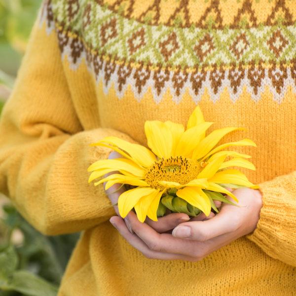 Solsikke genser